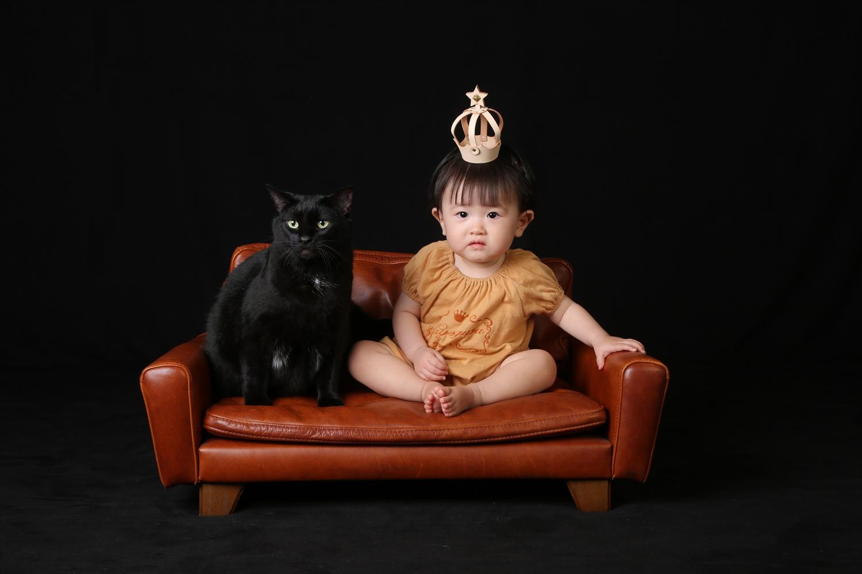 Baby&cat  ペット一緒に撮影できるフォトスタジオ